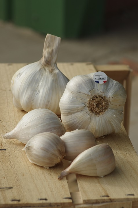 garlic for hair growth and hair loss